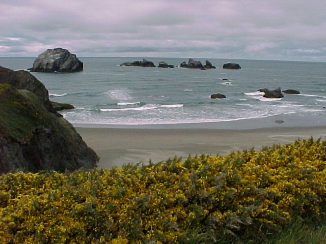 Oregon Face Rock And Bastendorff Beach Campground Coos