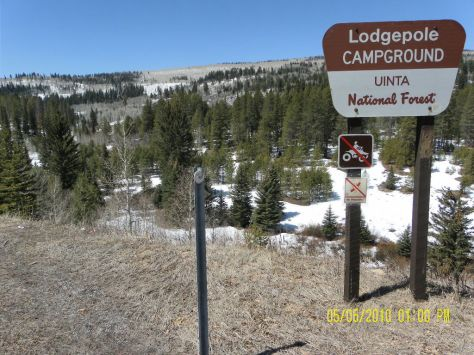 Lodgepole Campground sign