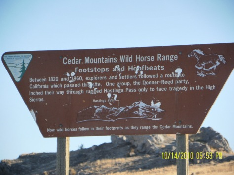 Cedar Mountains Wild Horse Range