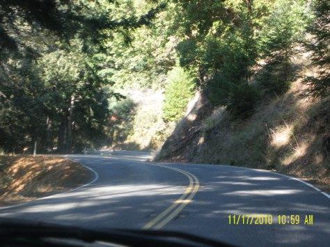 Hwy 1 from Legget to California coast