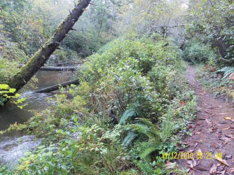Sutton Creek Trail