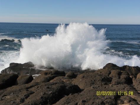 Boiler Bay Splash