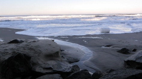Tillicum Beach Flotsam