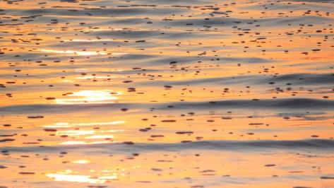 Sun, sea bubbles, ripples