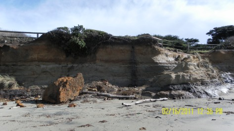 Damaged Shoreline - Feb 16, 2011