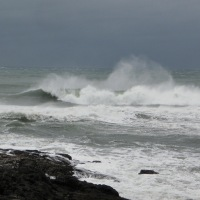 High Wind Warning - Central Oregon Coast