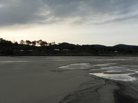 -1.1 low tide on Tillicum Beach today