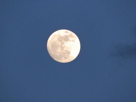 Super Moon over Tillicum