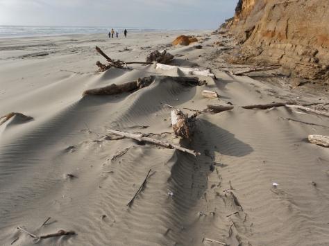 Windy Tillicum Beach