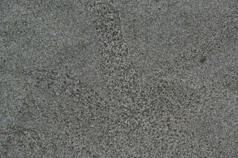 Tiny Crab Tracks on the Sand