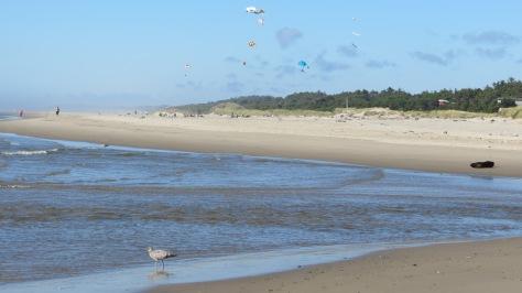 Big Creek Kites