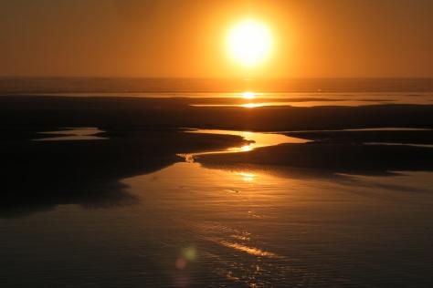 Foggy, Minus Tide, Sunset