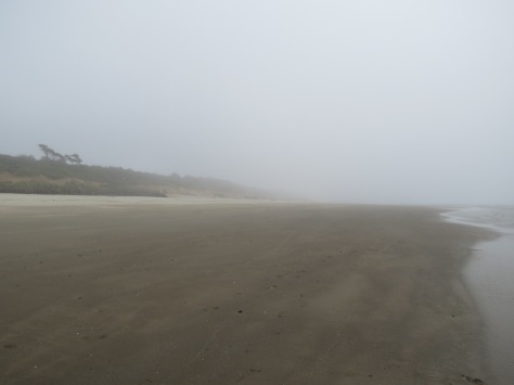 Foggy Tillicum Beach