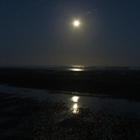 Moonset and Sunrise over Tillicum Beach