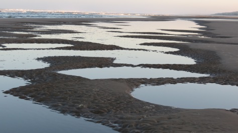 Sunrise Low Tide