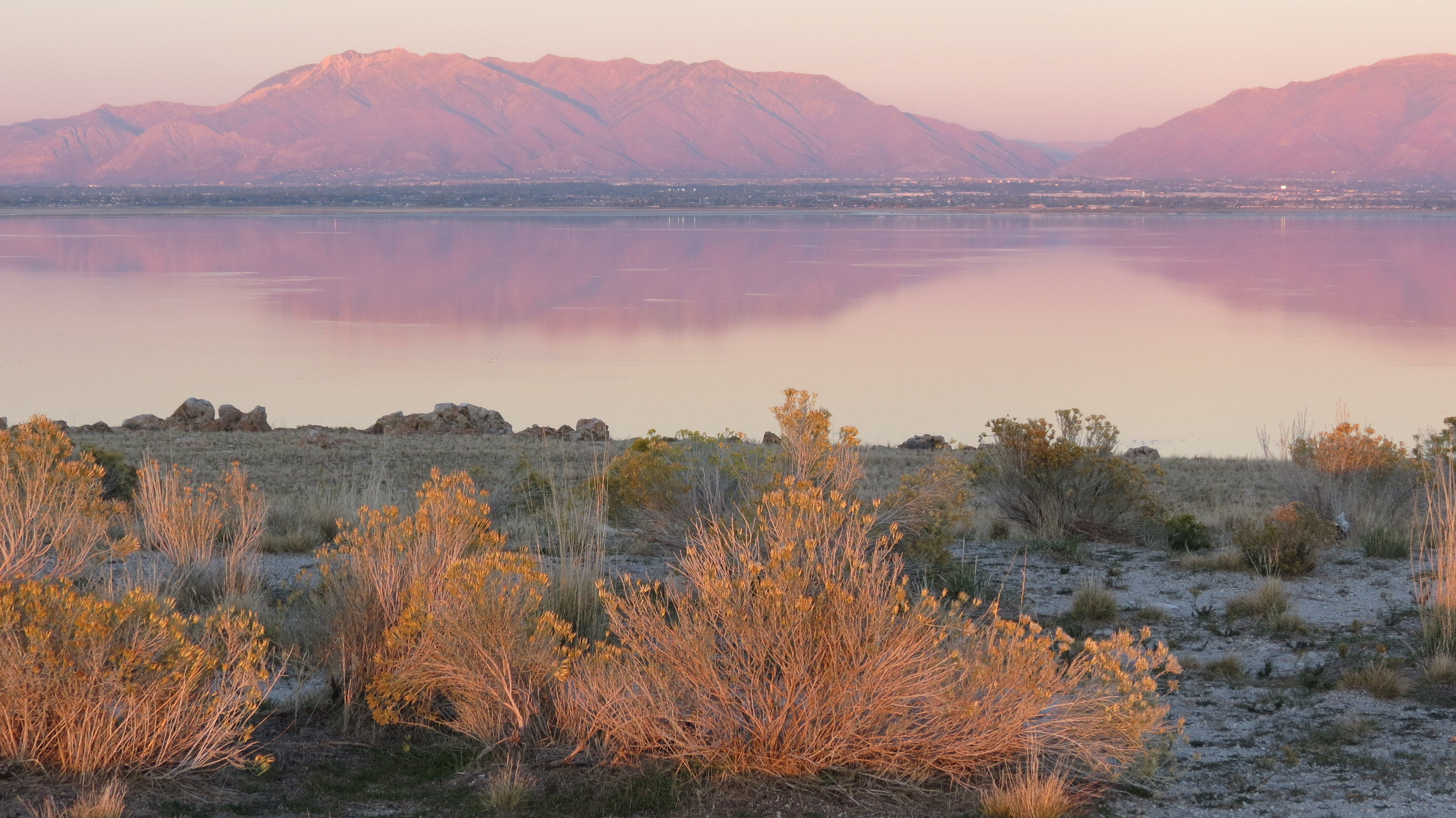 how to get to antelope island