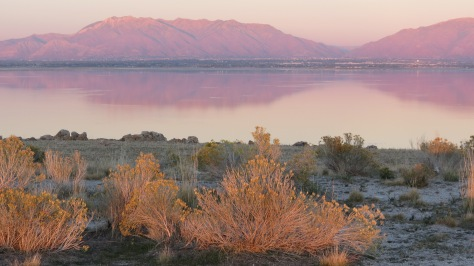 Antelope Island Sunset Wasatch Reflection