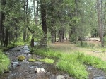 LastChance-CreekThroughCampground