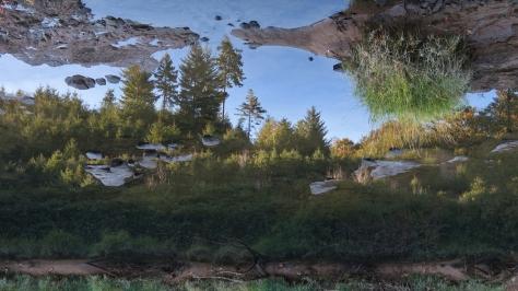 Reflections-upsidedown