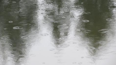 Soaker Rain