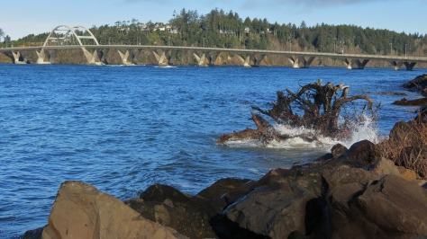 Alsea Bay Bridge - December High Tide