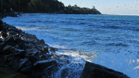 Alsea Bay - December High Tide