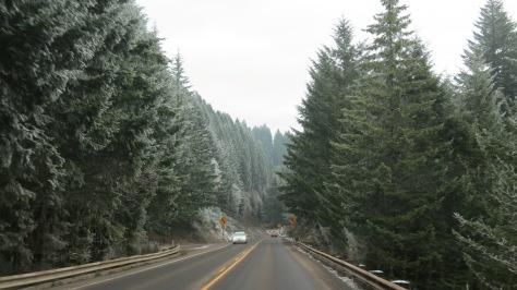 Frosty Pass - Coast Range