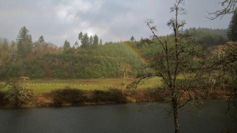 Rainbow Over the Alsea River