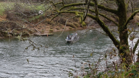 Steelhead Fishing in Alsea Tidewater