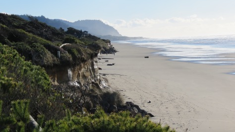 From Tillicum Campground to Yachats