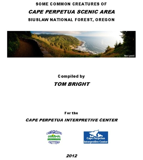 Cape Perpetua Picture Guide