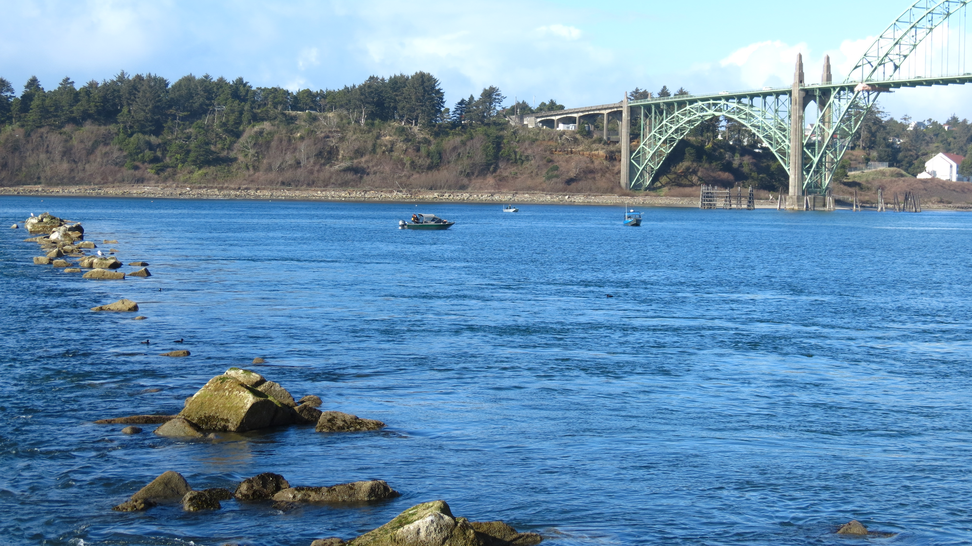 Yaquina bay picnic pamperingcampers blog for Jetty fishing oregon