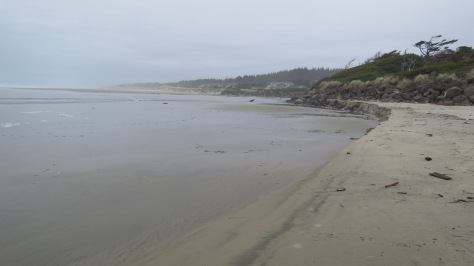 Big Creek - Tillicum Beach