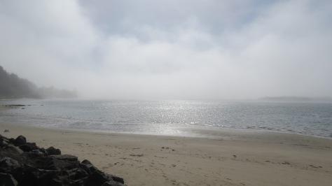 Alsea Bay Fog Bank Rolls In