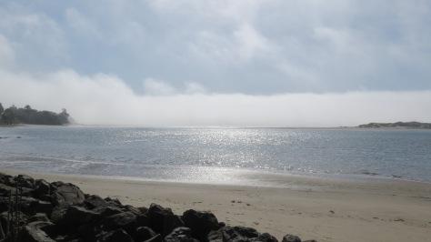 Alsea Bay Fog Bank Rolls Out