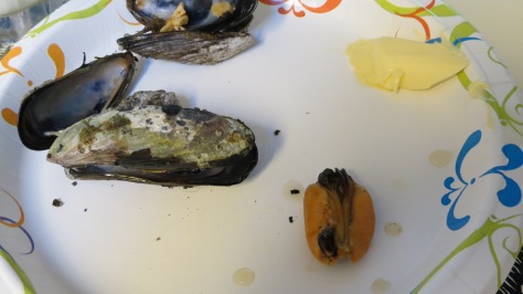 Black California Mussels for Dinner
