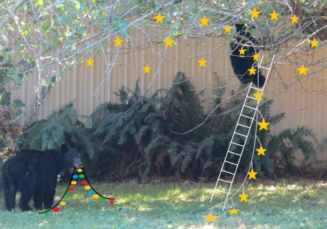 black bears decorating for Christmas