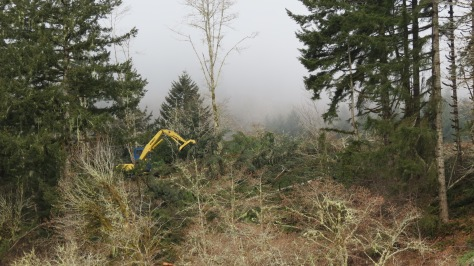 LoggingWithEquipment-2