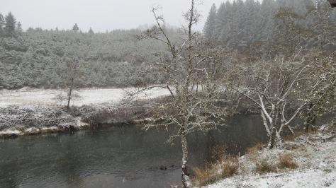 Alsea River Snow