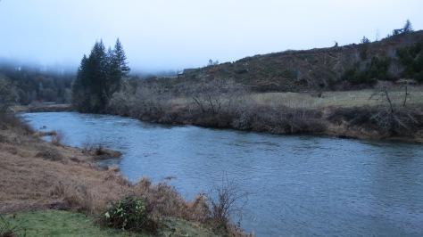 alsea river at tidewater