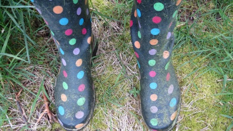 grassy rain boots