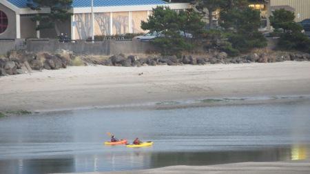 kayaking alsea bay