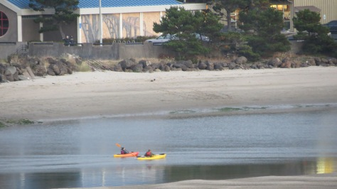 kayaking alsea bay