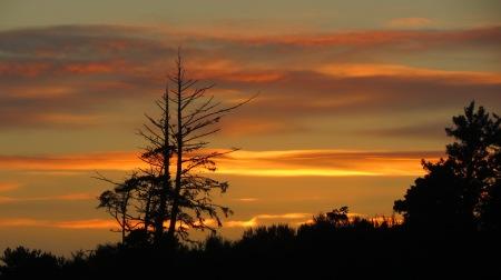 sunset waldport
