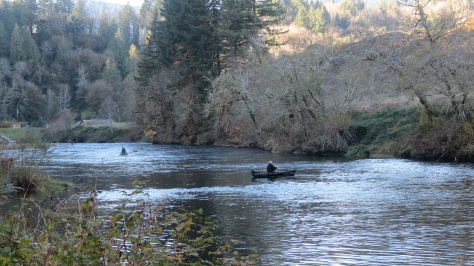 alsea river fishing