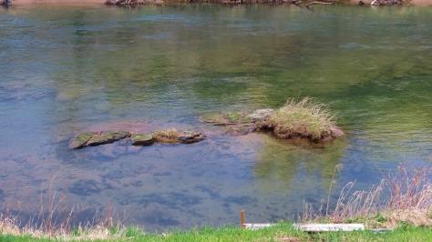 alsea river