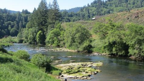 tidewater alsea river
